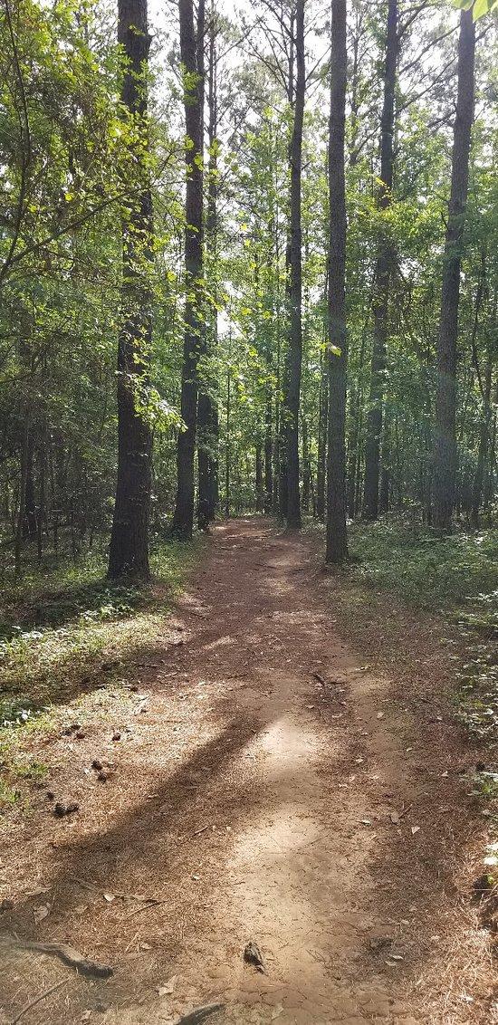Lafayette Heritage Trail Park