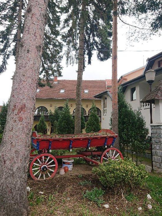 Hotel Jele Jezevica
