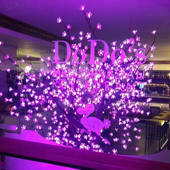 Dodo S Mediterrasian Restaurant Valencia Menu Prices
