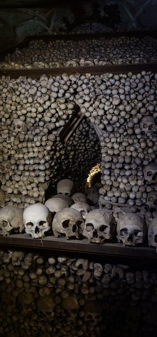 bones over bones