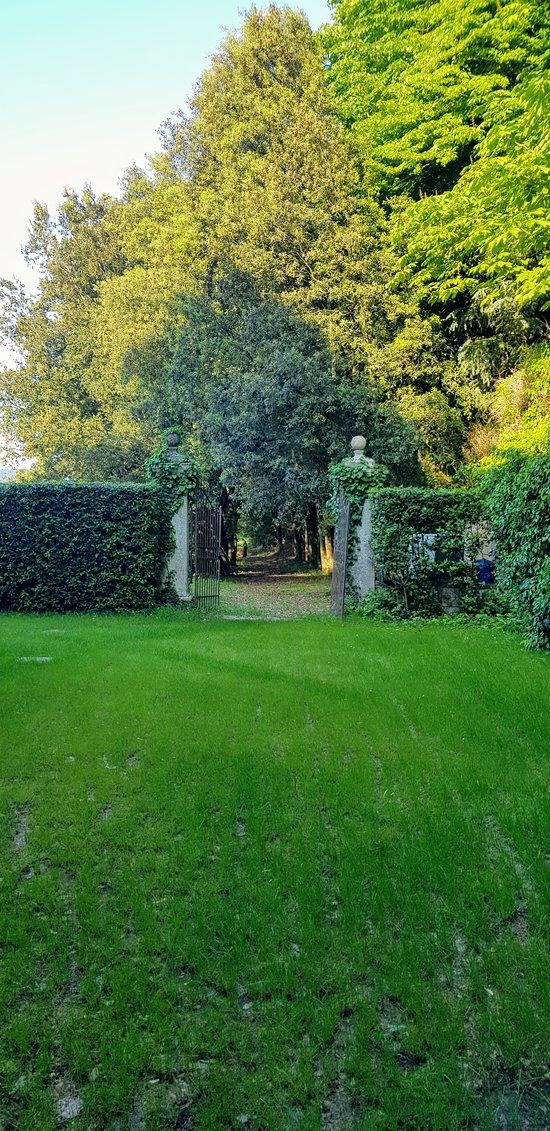 Jardín hacia el camino del bosque y los campos.