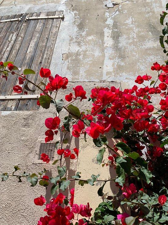 Oustaou Bello Visto Lodging Reviews Le Castellet France