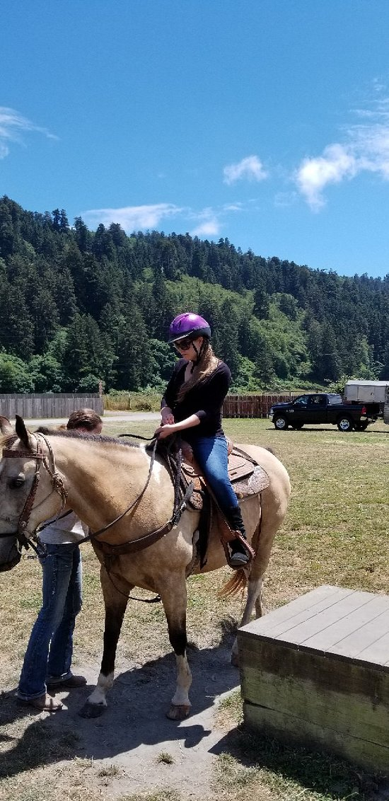 Redwood Trails Horse Rides (Orick) - Updated 2019 - All You