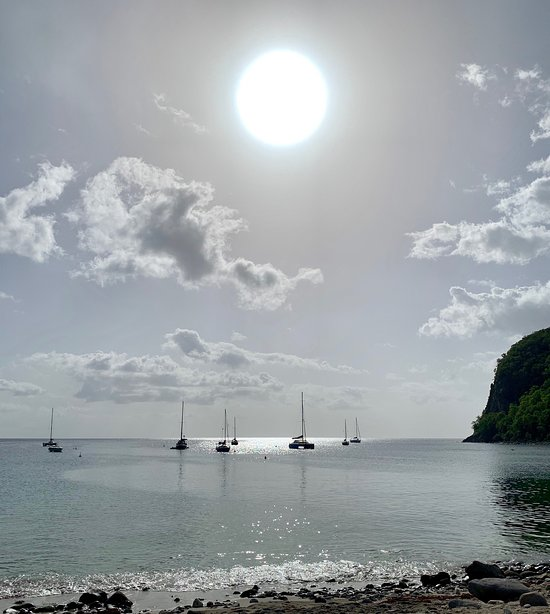 Lot de 5 SOUS BOCK Rhum de Guadeloupe