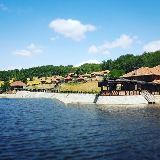 Eko Selo Kostunici