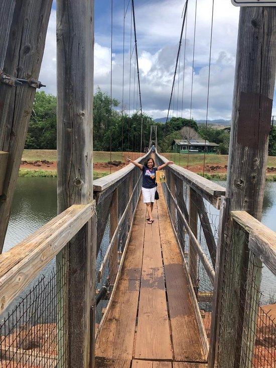 Swinging Bridge Hanapepe 2019 All You Need To Know