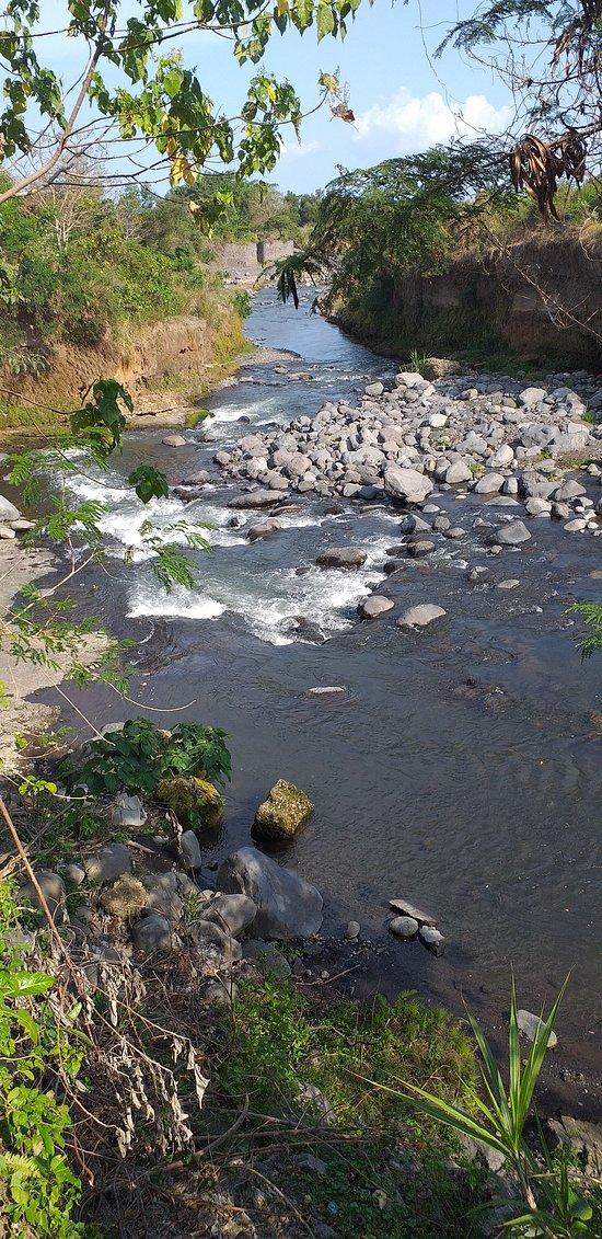 만냑에  발리 동쪽  투어 하시면  이 강으로 방문 헤주십시요.