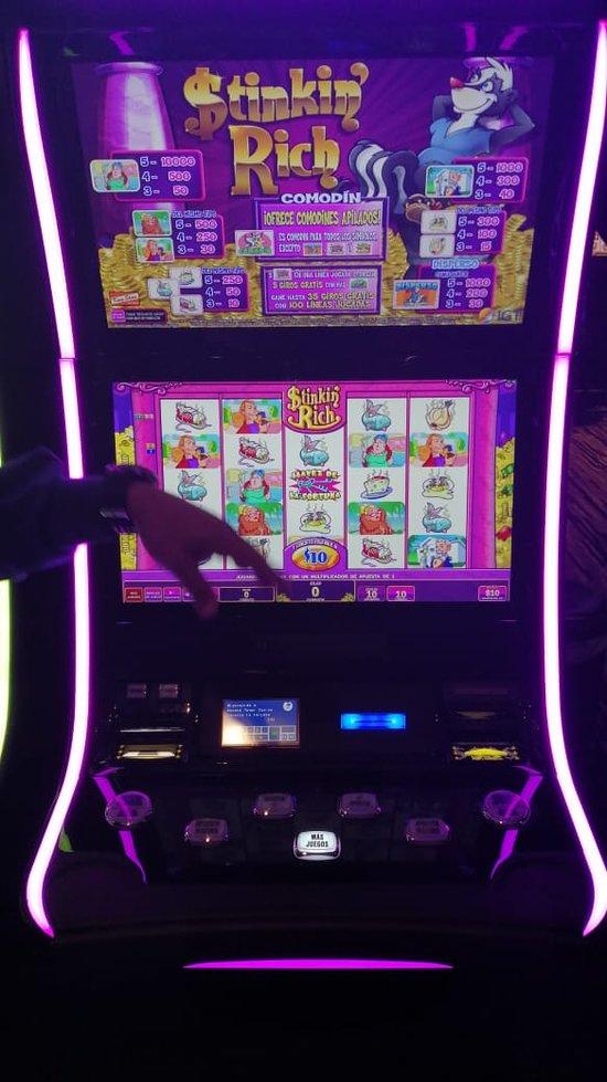 Best online bingo payouts