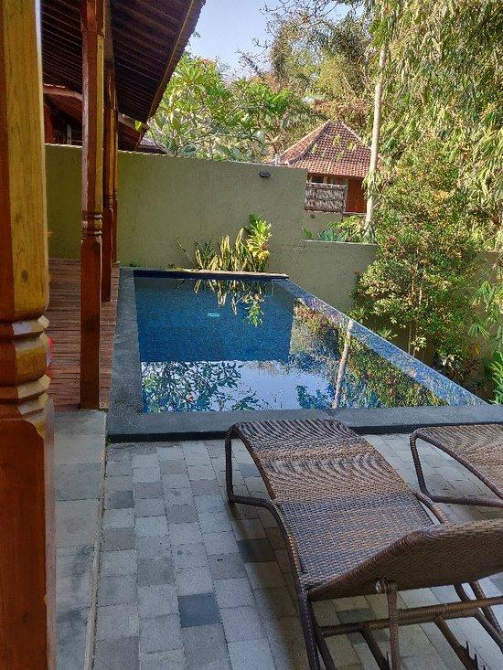 Ubud Heaven Sayan 62 9 1 Prices Lodge Reviews Bali Tripadvisor