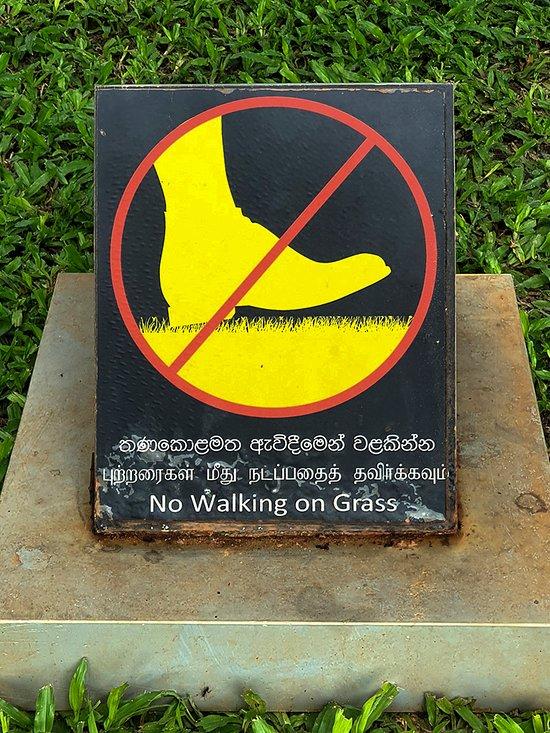 Srí Lankán kultura datování