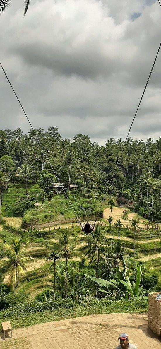 Ubud Surrounding tours..