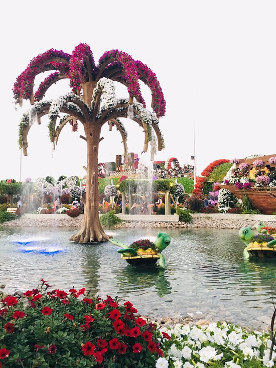 Dubai Miracle Garden 2019 All You Need to Know BEFORE You