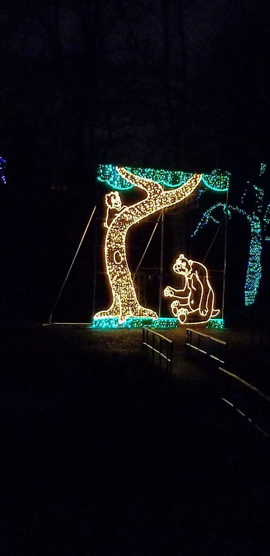 Festival of Lights- Dufferin Island