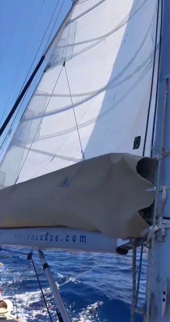 Wonderful day at sea