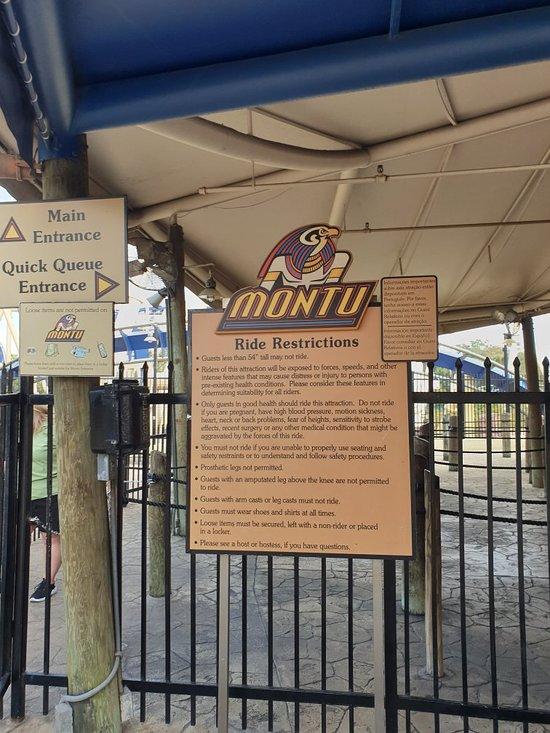 orlando tampa busch gardens - Busch Gardens Shuttle Pick Up Points