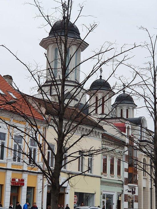 Prostitutes in Cluj-Napoca
