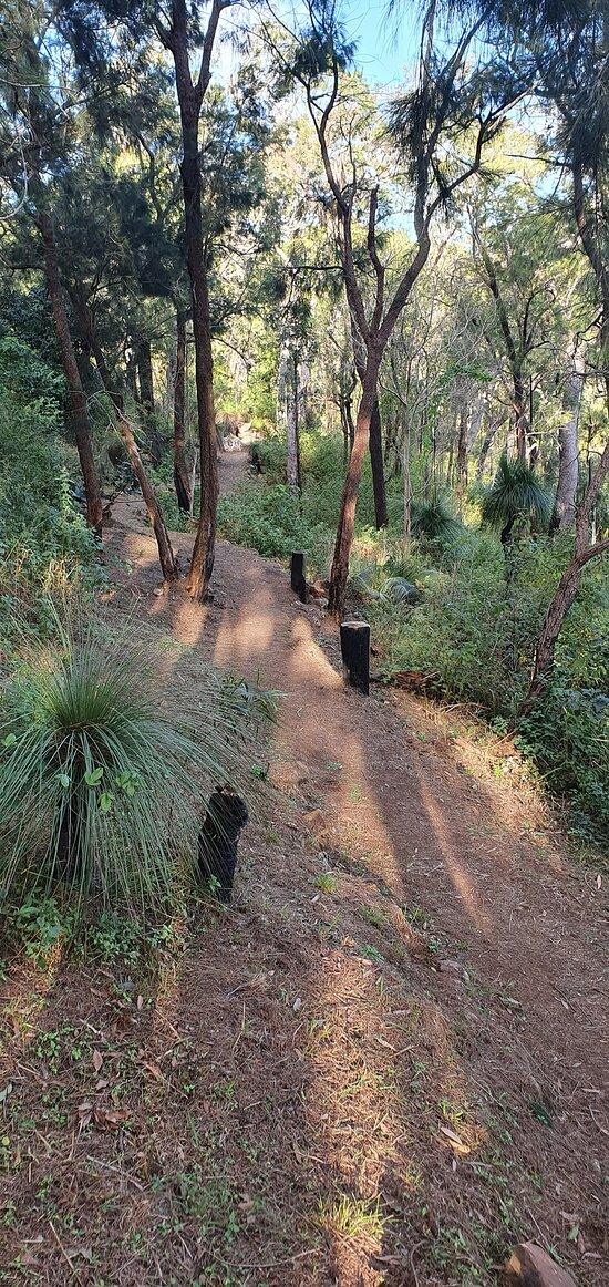 Mount Archer & Fraser Park