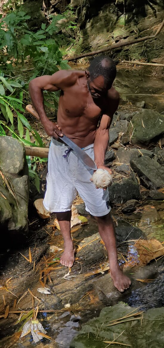 Bim cutting coconut for guests to sample