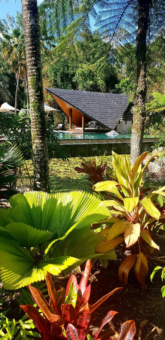 Balinese style Villas in tranquil surrounds
