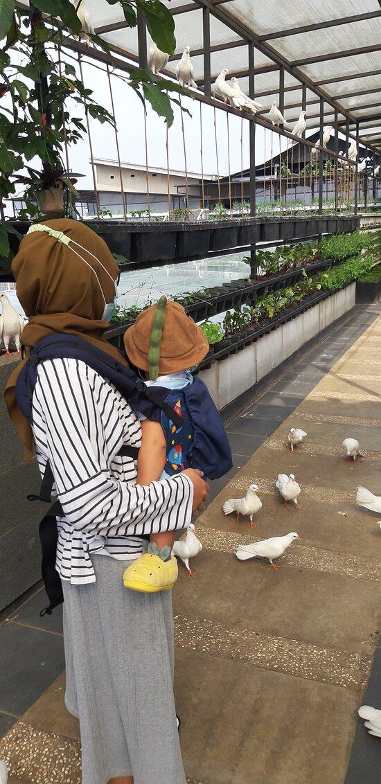 Pilihan utama staycation di Bandung bareng balita dan keluarga