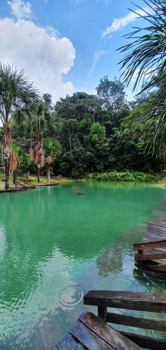 BRAAASIL CONHEÇA A AMAZÔNIA