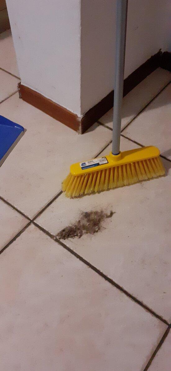 Appartamento non pulito prima del nostro ingresso.