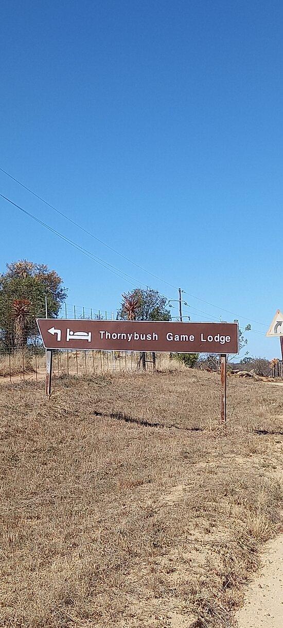 Entry Thornybush sign