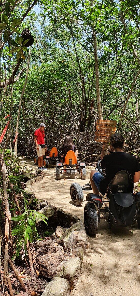Tour Jungle Karts