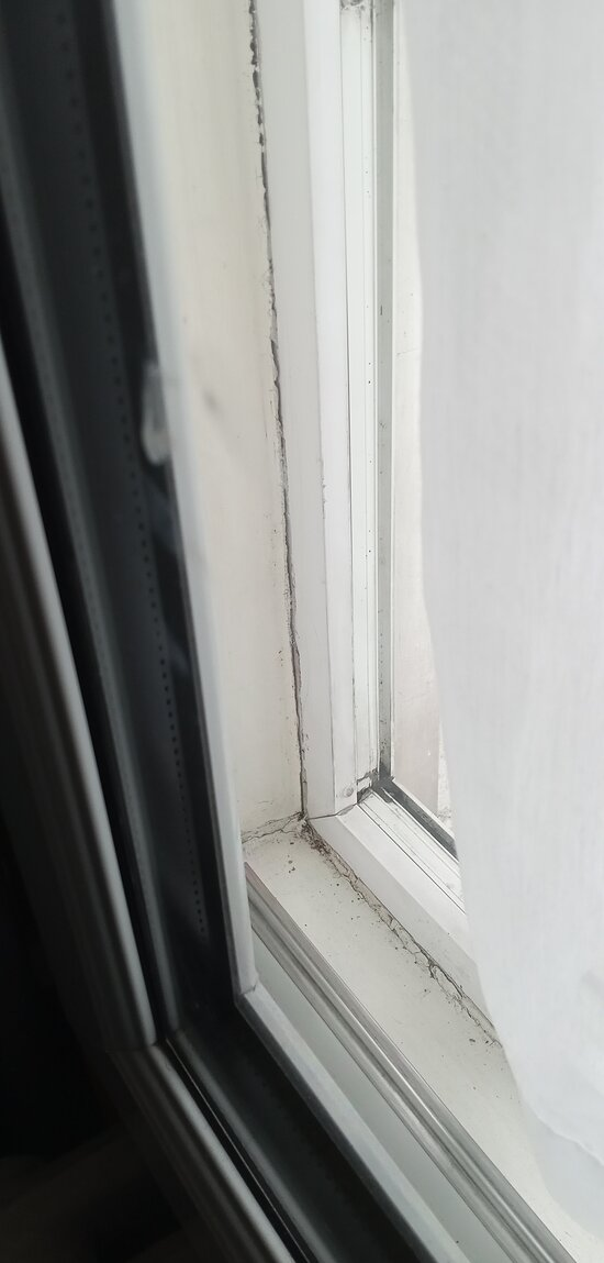 windows, this one is relatively clean