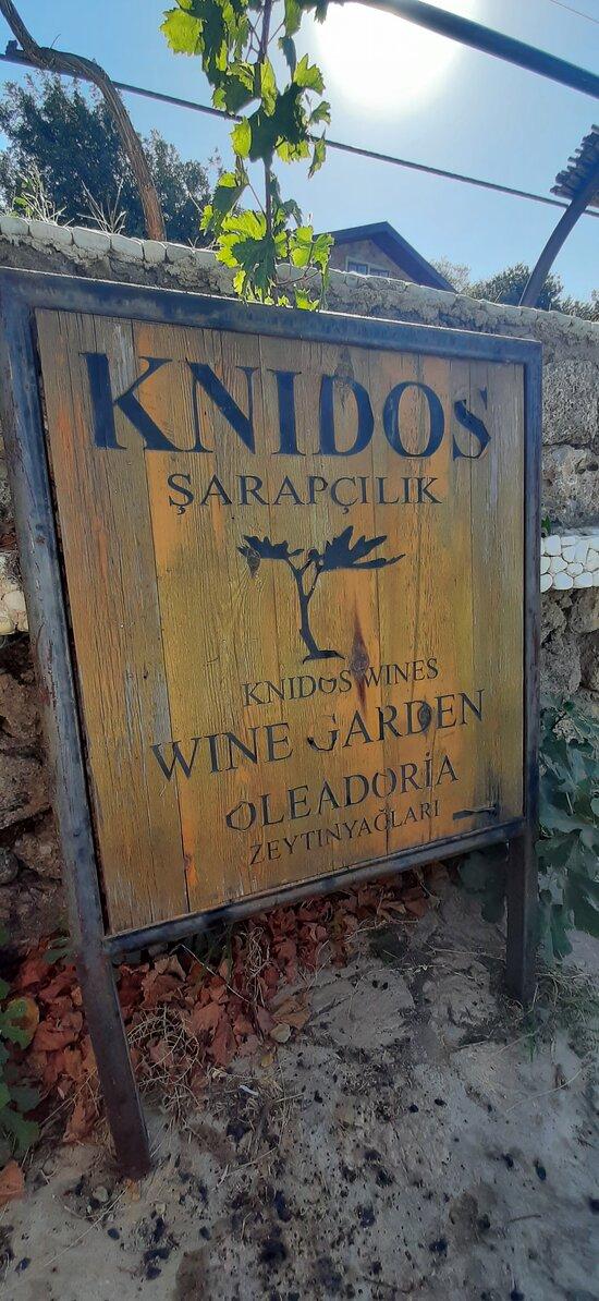 Knidos Şarapçılık