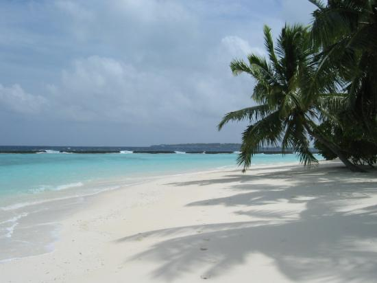 Vihamanafushi: View up the beach