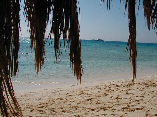 Hotel Sultan Bey Resort : surrounding coral islands