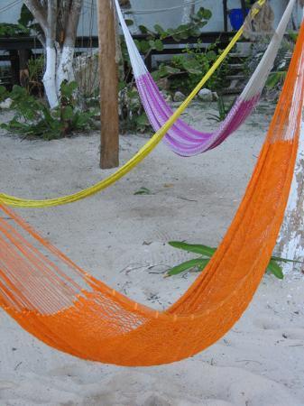 Blue Angel Resort: hammocks