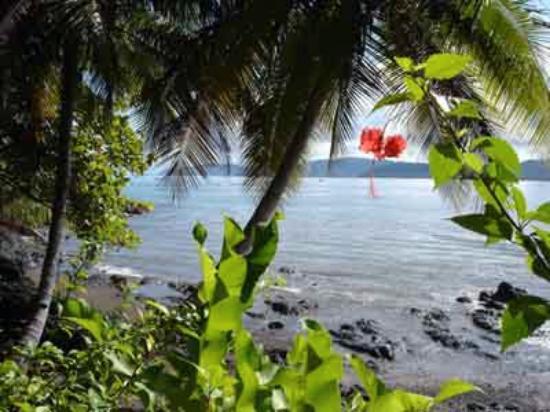 Jinetes de Osa Hotel: Bay view