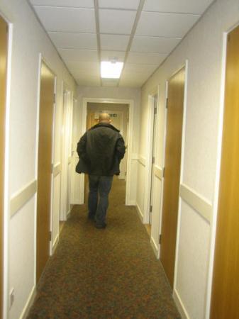 Tavistock Hotel: Hallway 8th floor