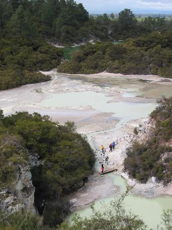 Wai-O-Tapu Thermal Wonderland: Thermal Overlook