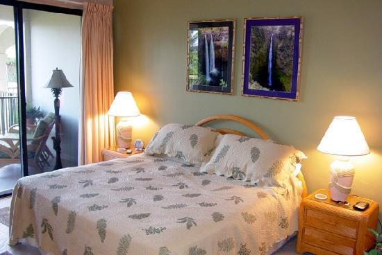 Pelican Cove Condos: Pelican Cove - Master Bedroom w/ Patio Access
