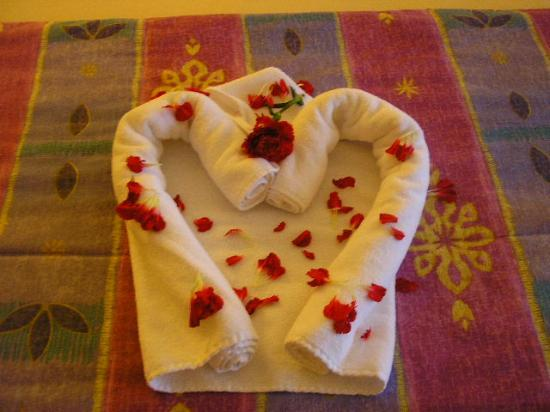 Iberostar Paraiso Lindo : towel the maids created for  us