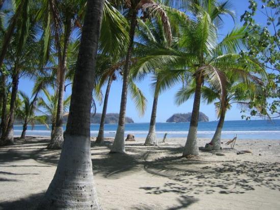 Hotel Las Brisas del Pacifico: Samara beach