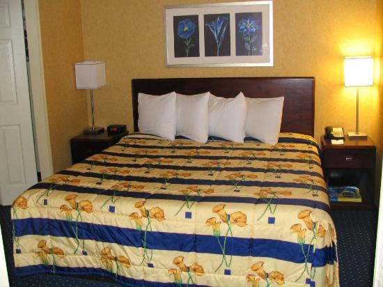 SpringHill Suites Florence: A king bed