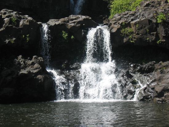 Ka'anapali Beach Club: 7 Sacred Pools (go the back way in!)