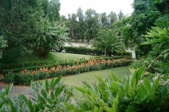 Quinta da Bela Vista: Part of the beautiful gardens