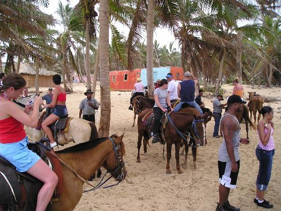 Excellence Punta Cana: Horseback riding