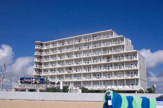 The Commander Hotel: Hotel from beach