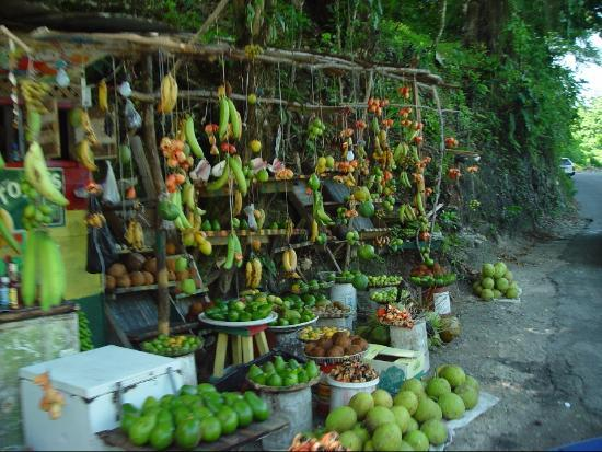 Rio Vista Resort: A fruit stand on the side of the road... actually in a rock wall niche on a very tight corner.