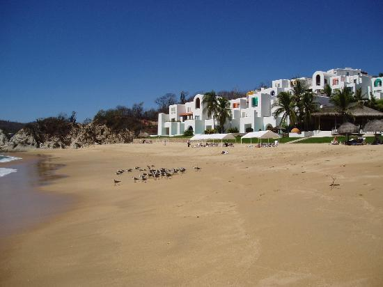 Camino Real Zaashila: A view of the resort from the beach