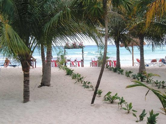 Sandos Caracol Eco Resort : What the hotel sets up for a wedding