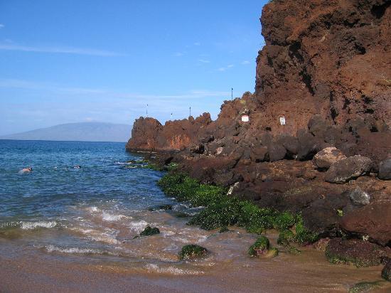 Sheraton Maui Resort & Spa : Black Rock