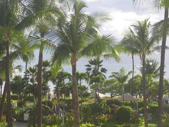 Sheraton Maui Resort & Spa : More of the grounds