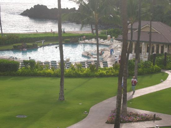 Sheraton Maui Resort & Spa : More of the pool